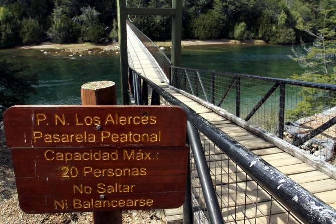 Alerces3